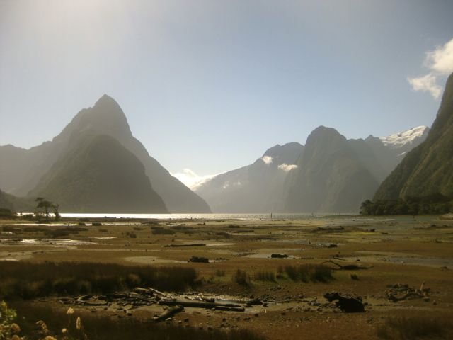 Milford Sound (Reiseblog und Foodblog Travel on Toast)