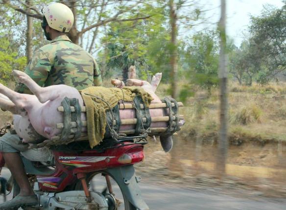 In Kambodscha