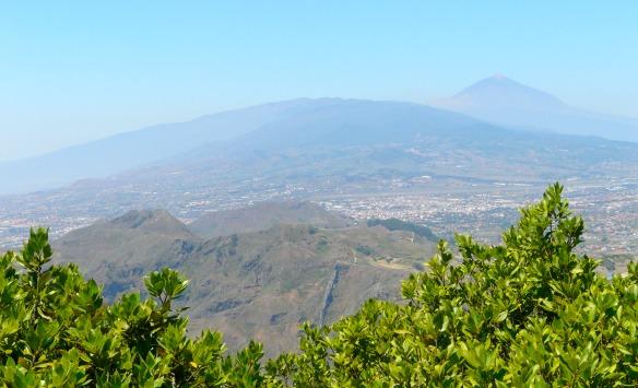 Die Vulkane von Teneriffa (Reiseblog und Foodblog Travel on Toast)