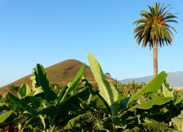 Vulkaninsel Teneriffa