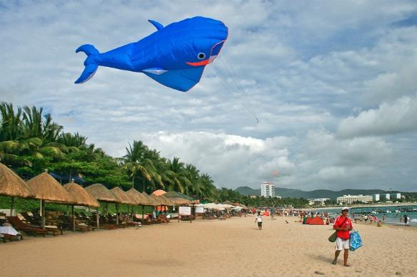 Hainan - Strand mit Wal