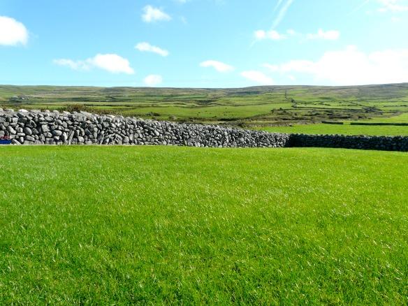 Irland ist wirklich grün!