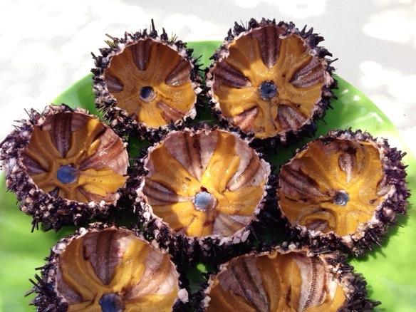 durian insekten schlange essen in asien reiseblog travel on toast. Black Bedroom Furniture Sets. Home Design Ideas