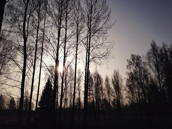 Morgenlandschaft in Finnland