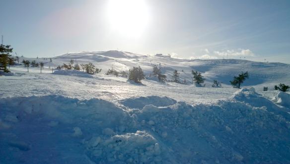 Levi in Lappland