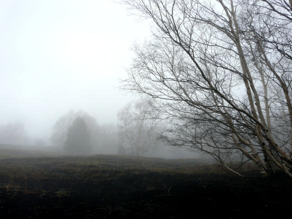 Ätna Tour mit Nebel