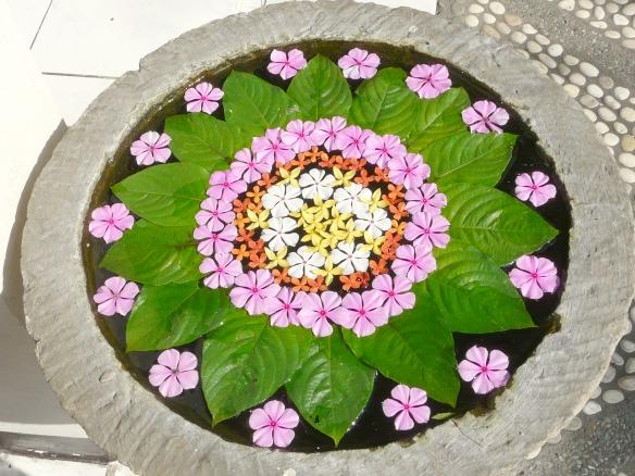 Bali - Blumen