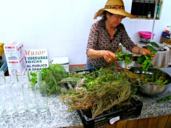 1.ibiza-can-muson-kräuter-hierbas