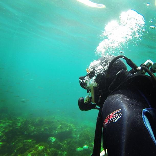 Malta - Reiseblogger Anja Beckmann beim Tauchen