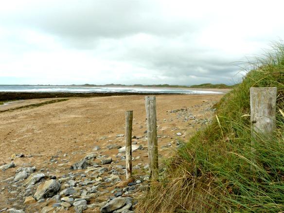 10 Irland - Strand