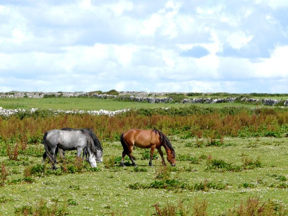 11 Irland - Doolin