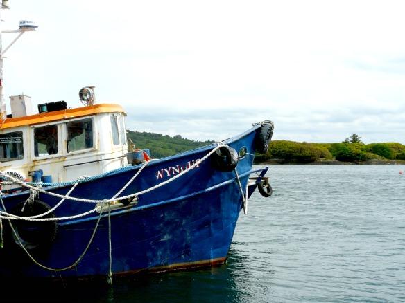 3 Irland - Garinish Island