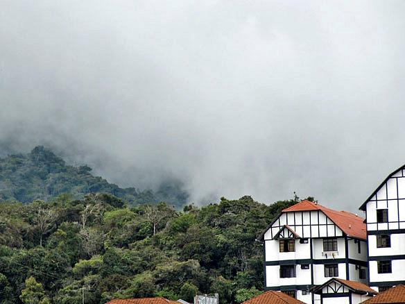 Malaysia Cameron Highlands 1