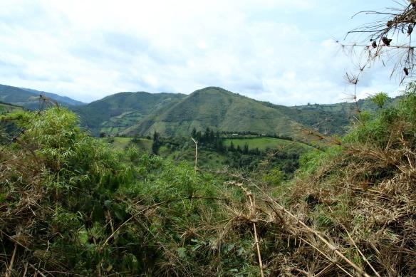 Nebelwald in Ecuador - Yunguilla - Ausblick