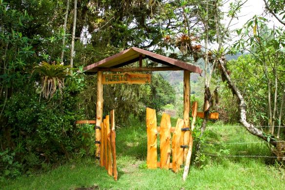 Nebelwald in Ecuador - Yunguilla - Gemüsegarten