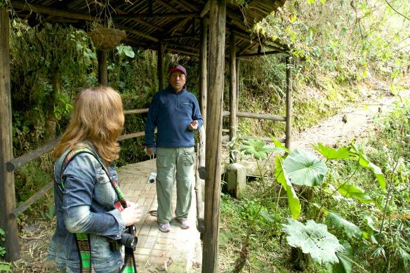 Nebelwald in Ecuador - Yunguilla - Guide Luis