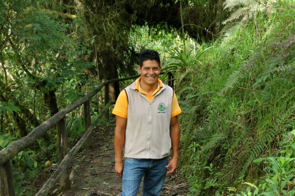 Nebelwald in Ecuador - Yunguilla - Herman