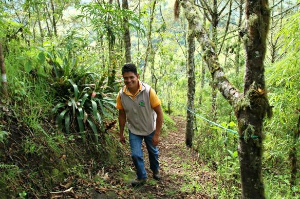 Nebelwald in Ecuador - Yunguilla - Tour mit Herman