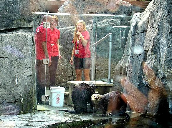 vancouver 7 - aquarium
