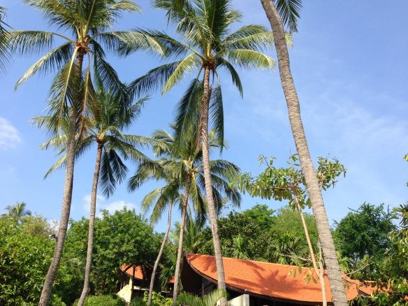 Reiseland Thailand 3