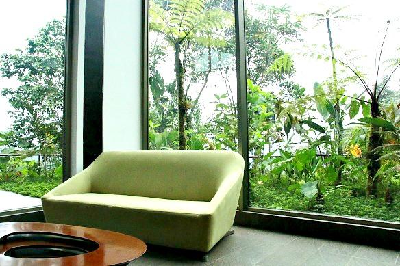 Sofa-vor-grün