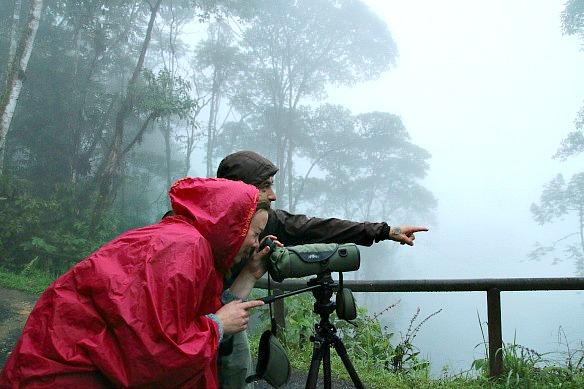 Vogelbeobachtung-mit-Guide