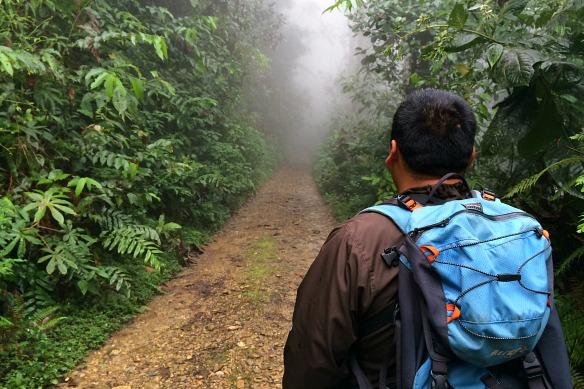 Wanderung im Nebelwald
