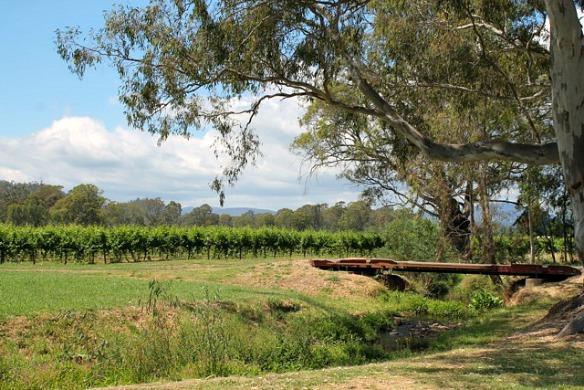 Australien - Radweg 3