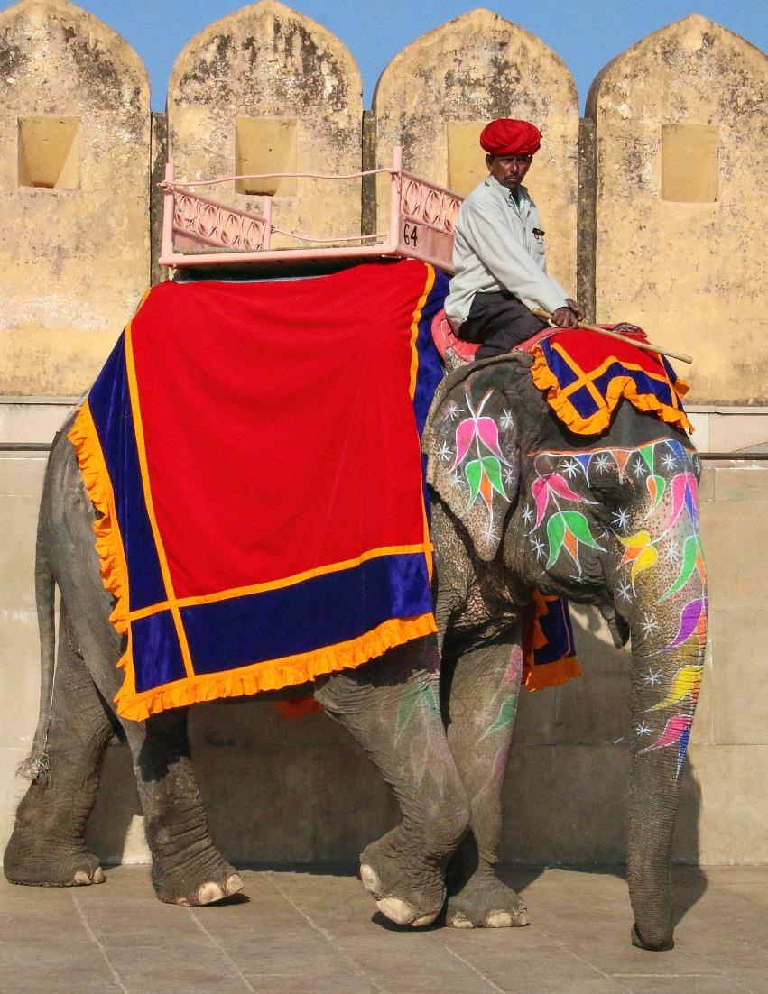 Artikel im Reiseblog: Indien zum 1. Mal - Vorurteile & Wirklichkeit
