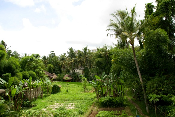 Ubud - Yoga Barn