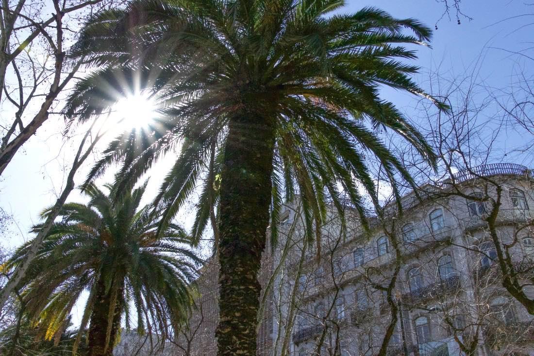 Sonnenziel Lissabon