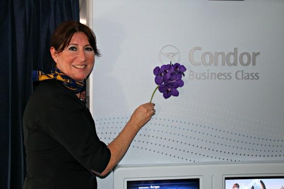 Condor Business Class - Purser