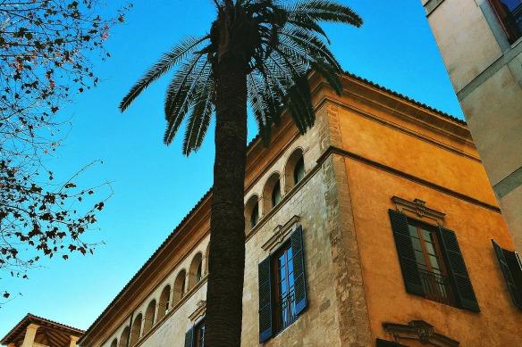 Mallorca - Palma Haus und Palme