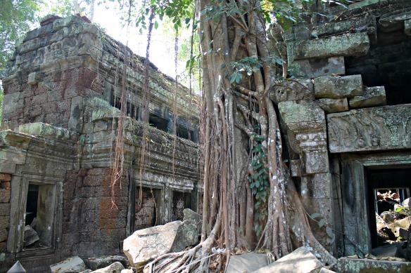 Ta Prohm 1 Kambodscha