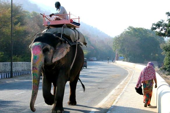 Alleine reisen durch Indien