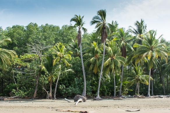 5 Costa Rica Natur