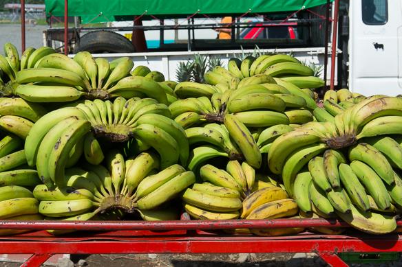 Bananen in Costa Rica