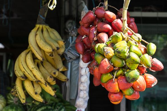 Pejibaye, die Früchte der Pfirsichpalme