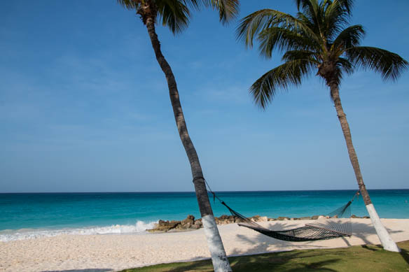 Druif Beach - Relaxen auf Aruba