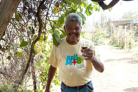 Winzer auf Aruba