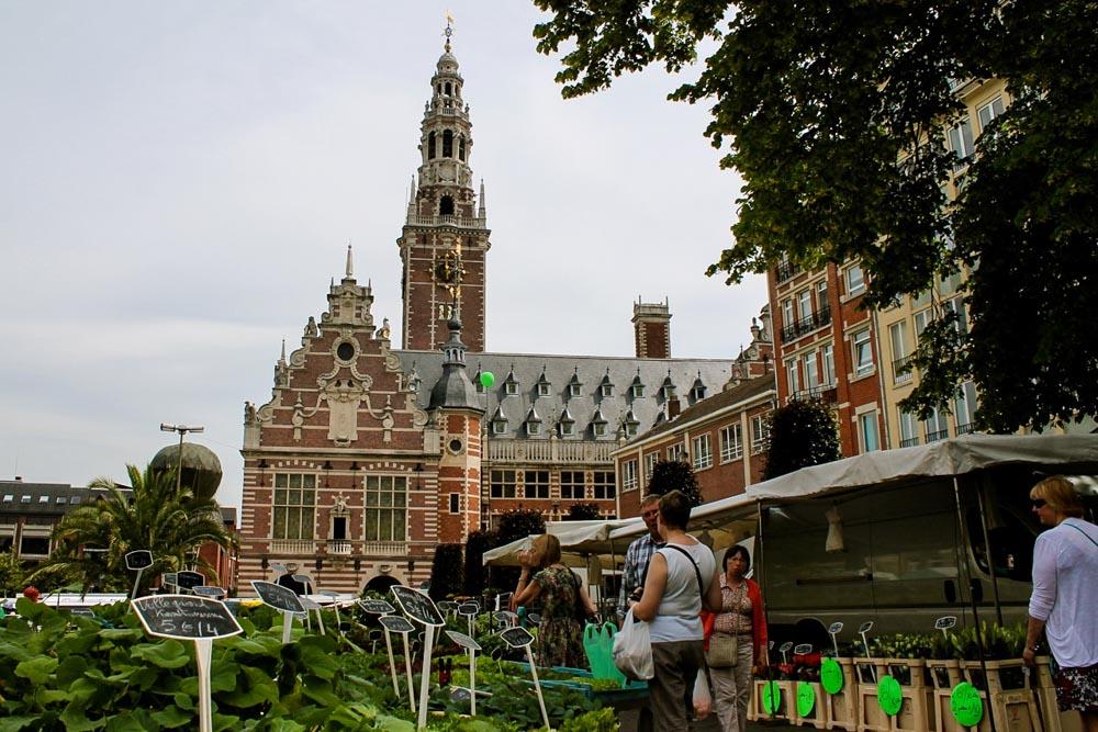 Markt Leuven Flandern Belgien