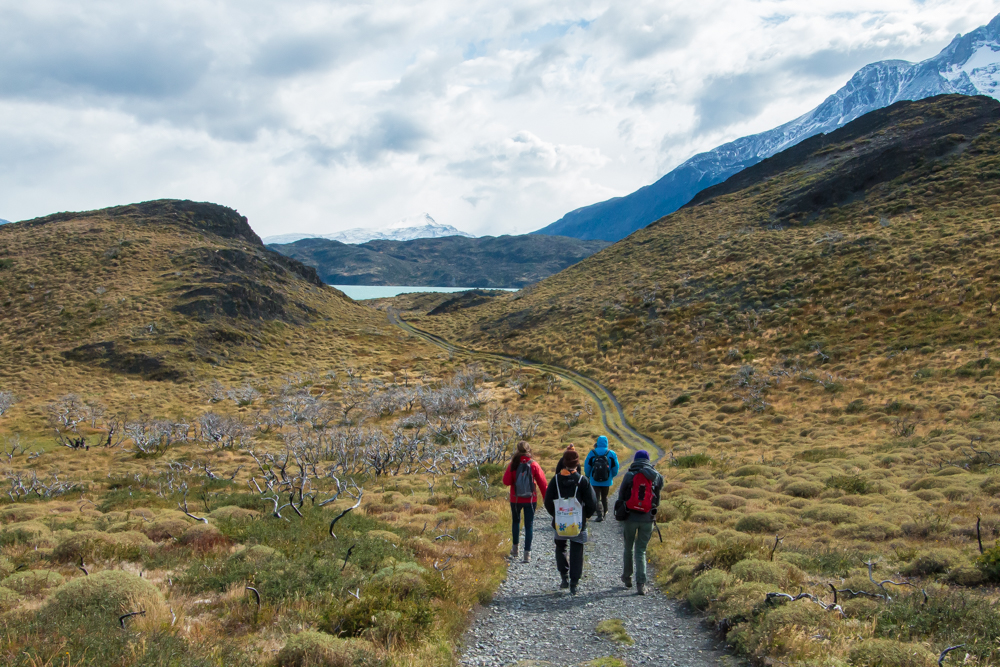 Wandern im Torres del Paine