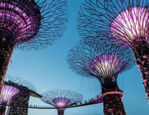 Supertrees Gardens by the Bay Singapur Highlights Sehenswürdigkeiten