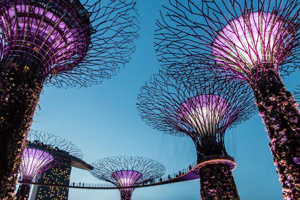 Singapur Supertrees Lightshow