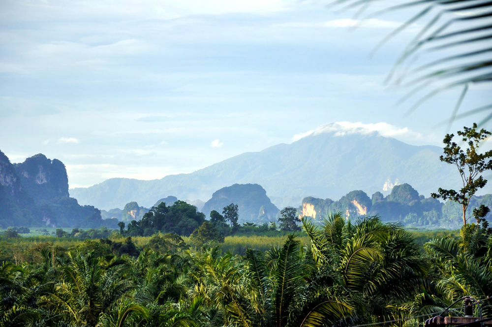 2_Krabi Thailand Landschaft Berge Regenwald Dschungel Tropen Vegetation