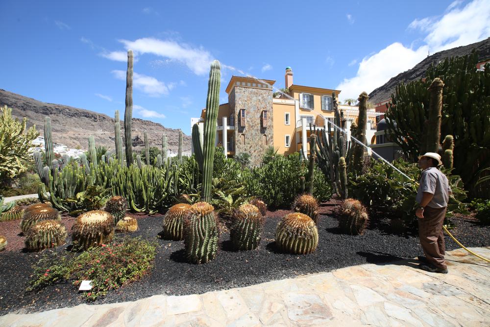 6. Cordial Mogán Playa Garten.jpg