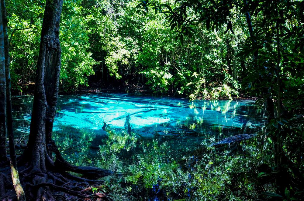 7_Krabi Dschungeltour Regenwald Blue Pool