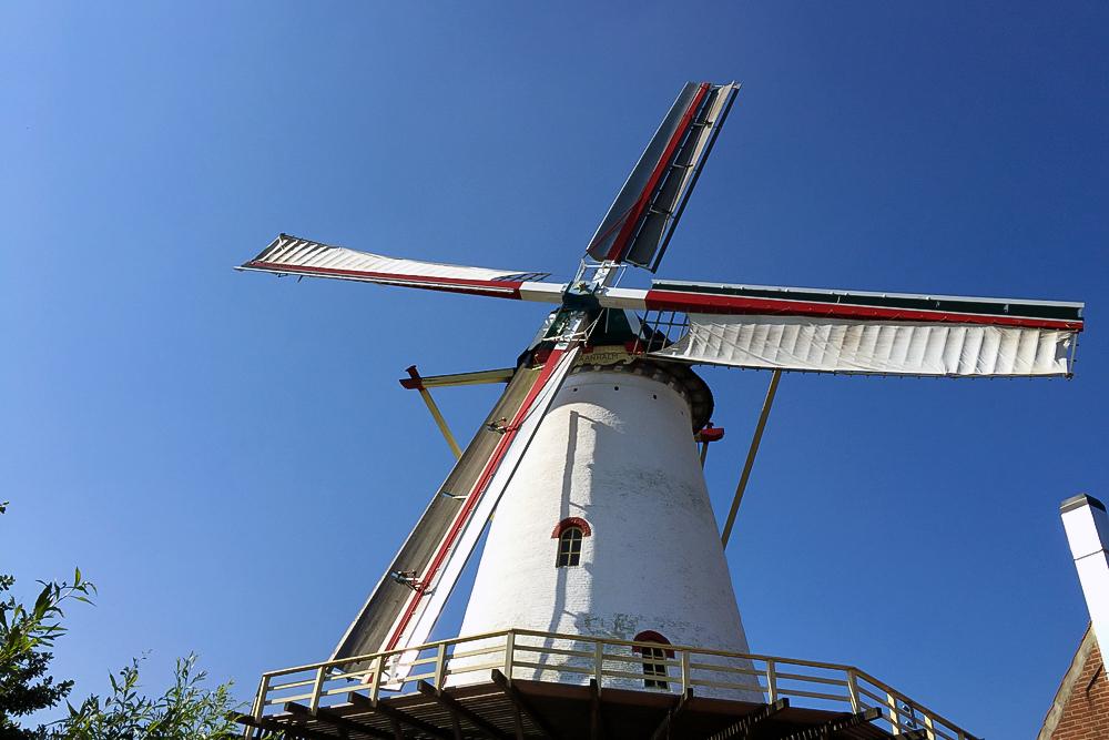 12 Windmühle in Seeland