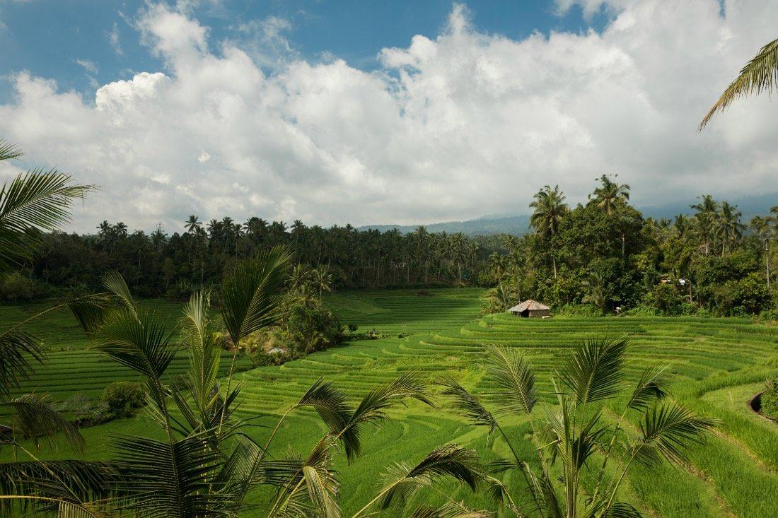 Bali Tipps einer Einheimischen