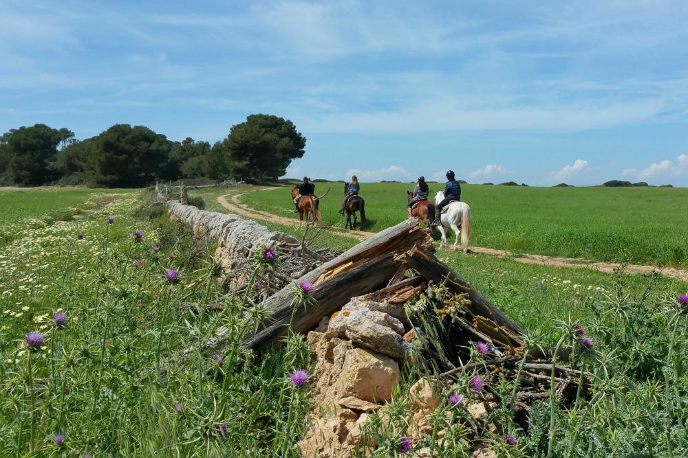 Mallorca Ausritt Sa Barrala